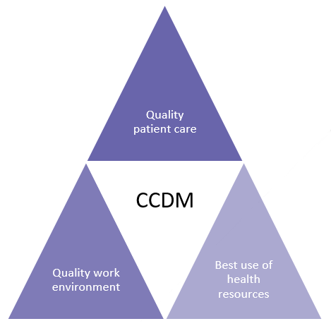 CCDM fundamentals which underpinn safe staffing and healthy workplaces for nursing and midwifery staff