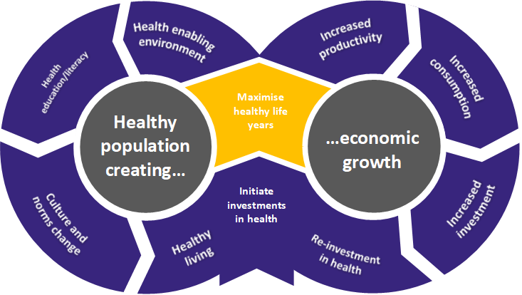 How healthy populations create economic growth